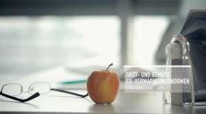 """""""Über die Normen"""" – Formaxx"""
